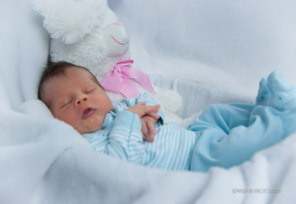 WErtman Photography babies-5