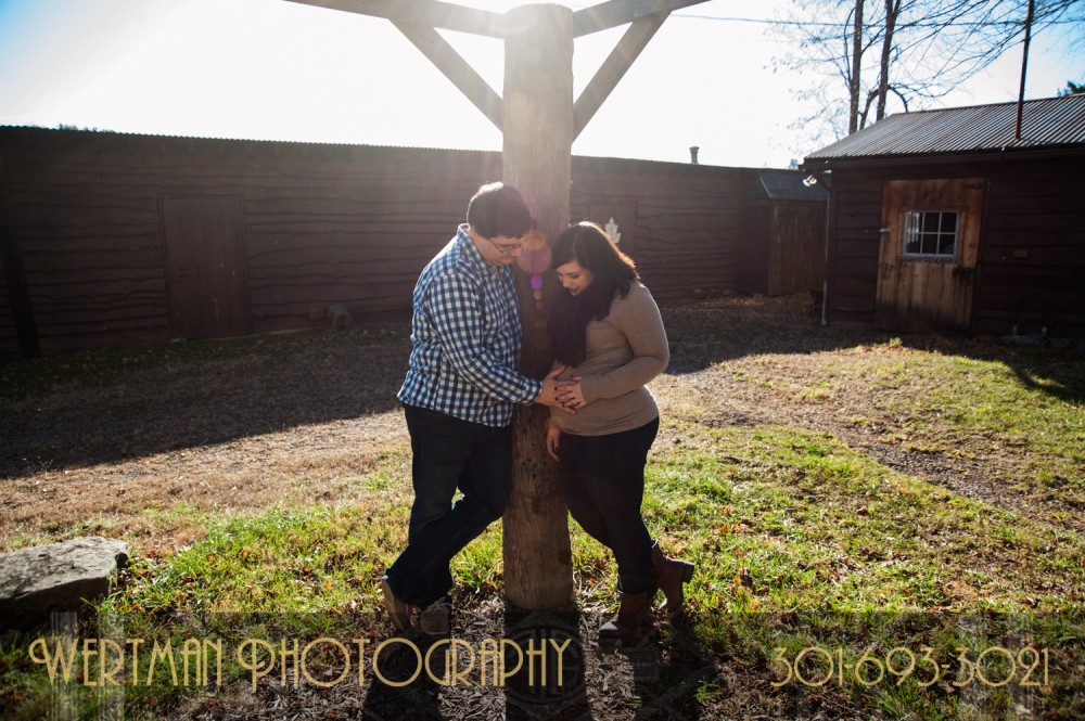 wertman photography baby bump-maternity-18