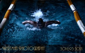 swimming fly