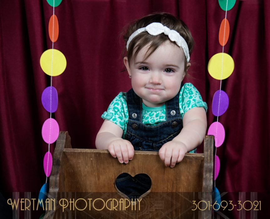 wertmanphotography Lucy first birthday-17