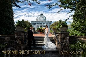 wedding in botanical gardens